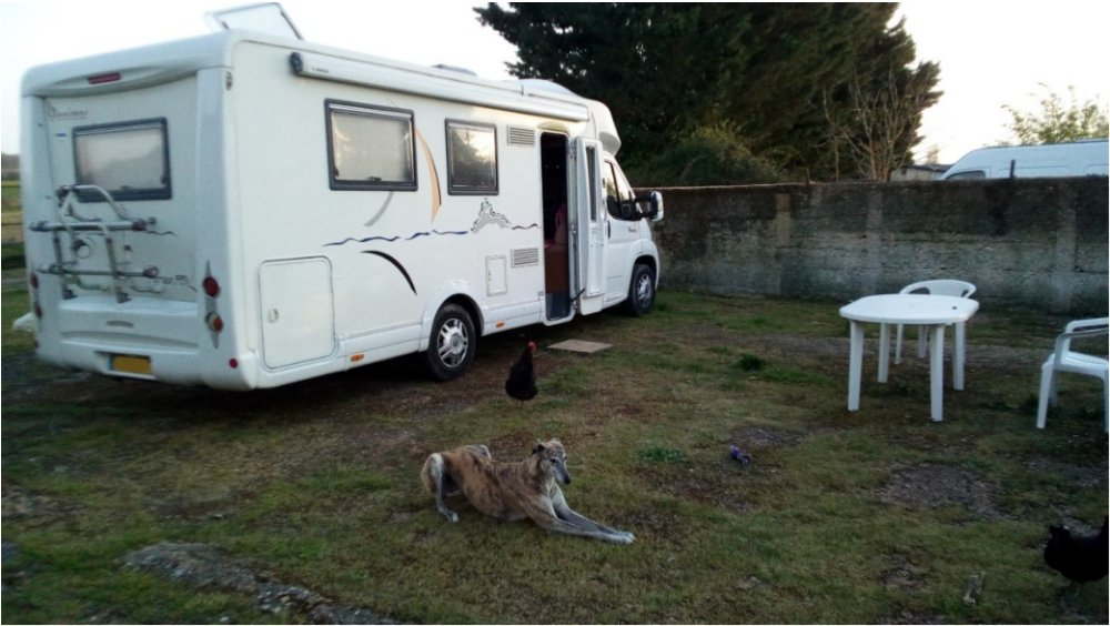 Aire camping-car à Amné (72540) - Photo 7